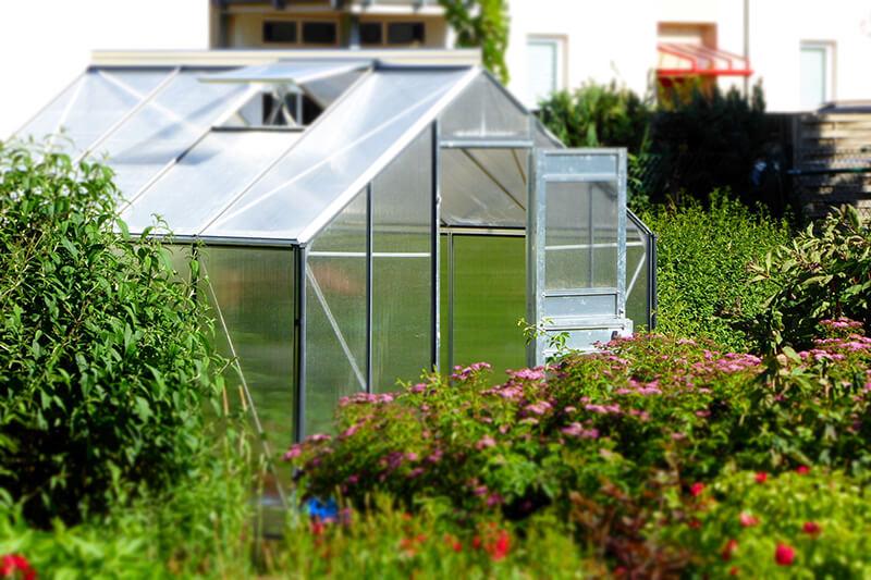 Gewächshaus im Garten