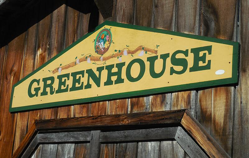 Gewachshaus Aus Holz Die Besten Tipps Tricks 2019 Grunholm