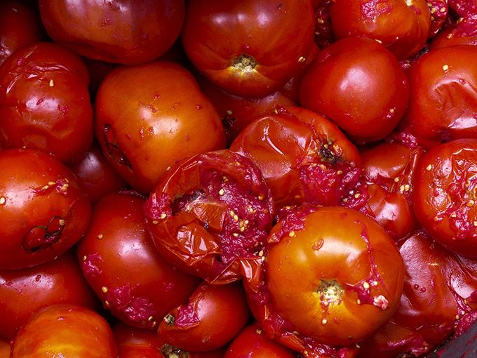 Verfaulte Tomaten
